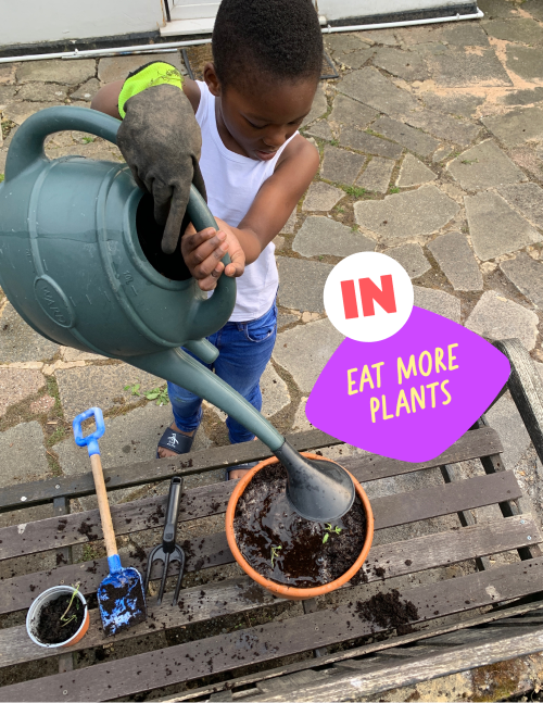 Child watering plants in a pot