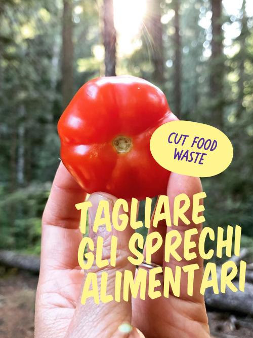 Tagliare Gli Sprechi Alimentari, red tomato