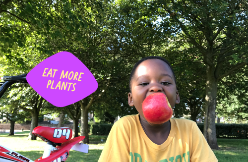 Boy eating a red apple to eat more plants