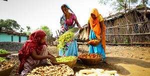 Indo-Global Social Service Society