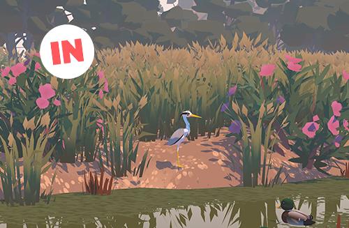 a heron