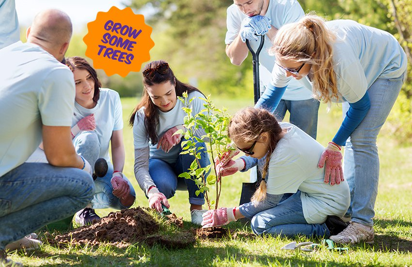 People planting a tree with grow some trees sticker